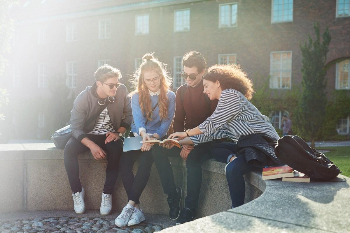 Werkstudenten unterhalten sich im Park über Studentenjobs.